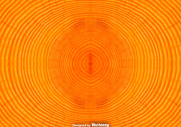 Tree Rings Background / Vector Tree Trunk Background - vector gratuit #375513