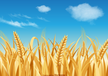 Free Wheat Stalk Vector Landscape - бесплатный vector #377783
