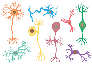 Free Neuron Icons Vector - бесплатный vector #380423