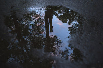 Reflection in the puddle - image gratuit #380993