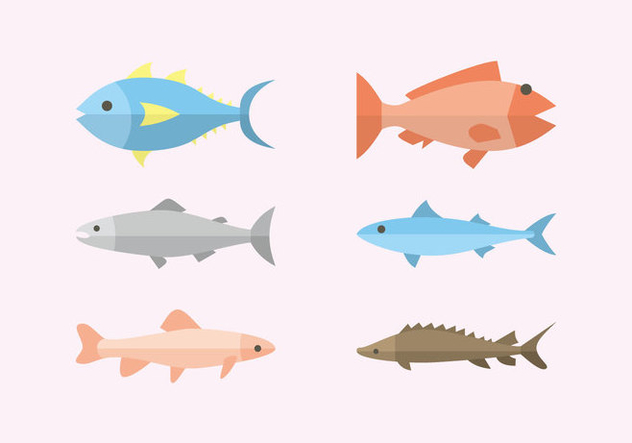 Flat Fish Illustration Vector - Free vector #382193