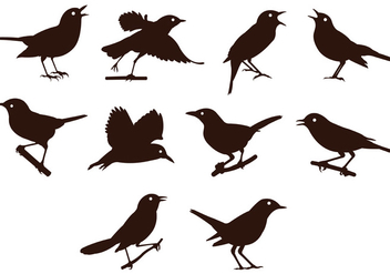 Nightingale Silhouettes Vector - Free vector #384043