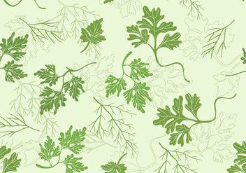 Cilantro Vector Set - бесплатный vector #384343
