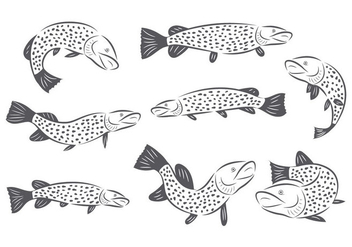 Free Pike Vector - Free vector #386543