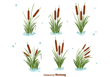 Cattails Set Vector - vector #386663 gratis