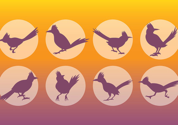 Free Roadrunner Icons Vector - бесплатный vector #386693