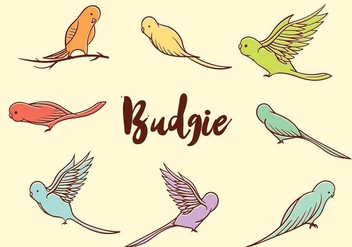 Free Budgie Vector - Free vector #386723