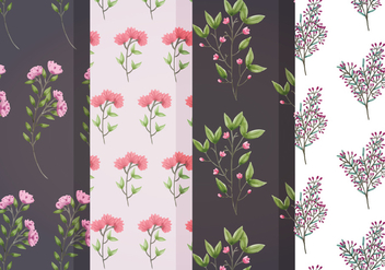 Vector Floral Patterns - vector gratuit #391553