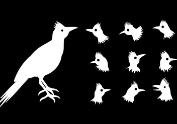 Free Roadrunner Icons Vector - бесплатный vector #394603