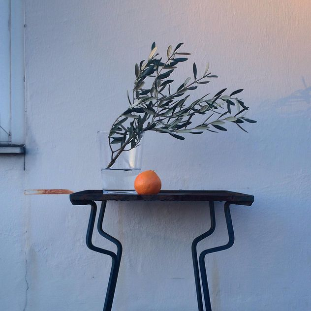 Olive branches in vase and orange - Free image #394813