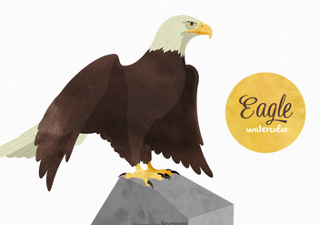 Free Watercolor Eagle Vector - vector gratuit #395113