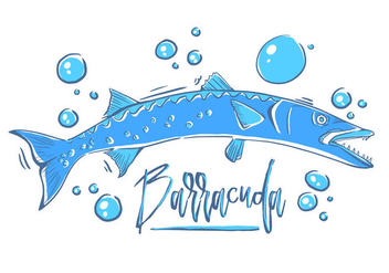 Free Barracuda Fish - vector #395463 gratis