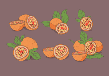 Passion Fruit Vector - vector #397453 gratis