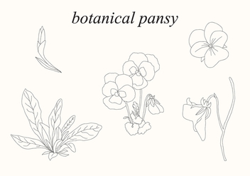Botanical Pansy - Free vector #399573