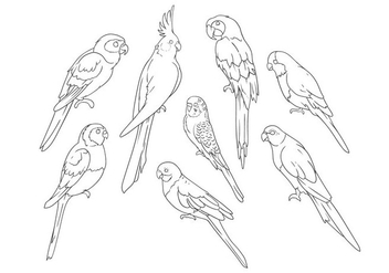 Free Hand Drawing Parrots Vector - Kostenloses vector #399853