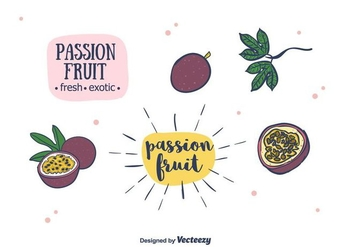 Passion Fruit Vector - vector #400453 gratis