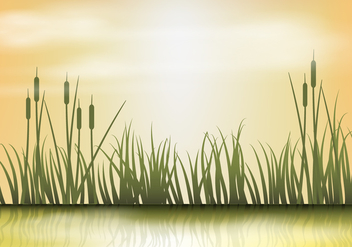 Reeds On Sunset Background Vector - Free vector #400503