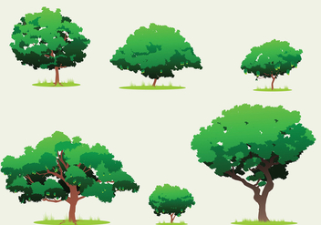 Mango Tree Free Vector - бесплатный vector #400573