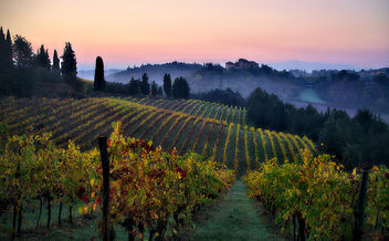 Good Morning, Tuscany! - бесплатный image #400623