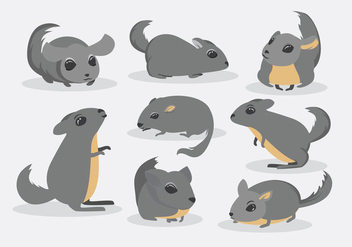 Free Chinchilla Vector - Free vector #401523