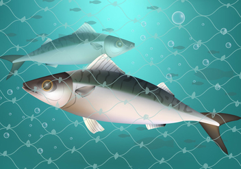 Fish Caught In Fishing Net Ilustration - бесплатный vector #402113