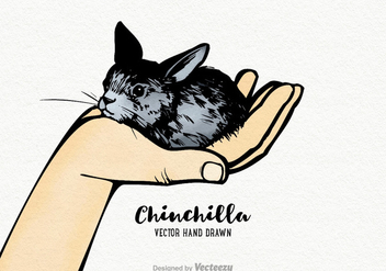 Free Vector Hand Drawn Chinchilla - Kostenloses vector #402873