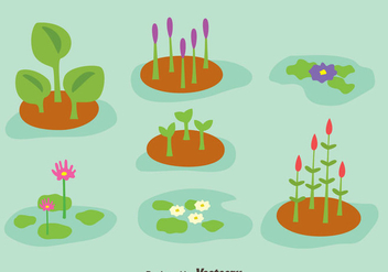 Swamp Plant Collection Vector - бесплатный vector #405113