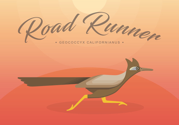 Roadrunner Bird Illustration - vector #407043 gratis