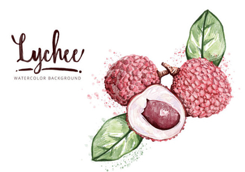 Free Lychee Background - vector gratuit #407333