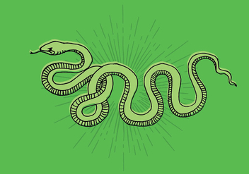 Snake Line Drawing - vector gratuit #408313