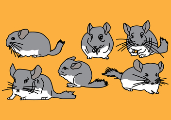 Chinchilla Vector Pack 3 - Free vector #408853