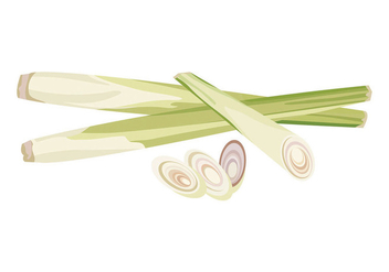 Lemongrass Vector - бесплатный vector #409363