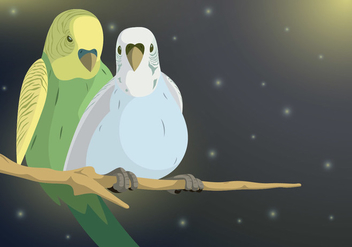 Budgie Couple Vector - Free vector #411113