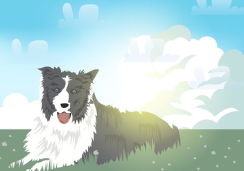 Border Colie Dog - vector #412023 gratis