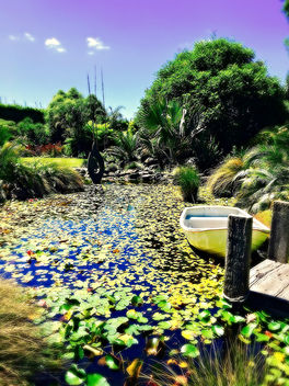 wedding garden scenery, getting the fever - image gratuit #413073
