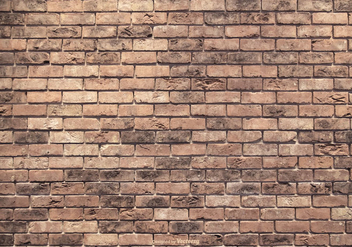 Vector Brick Wall Texture - vector gratuit #413323