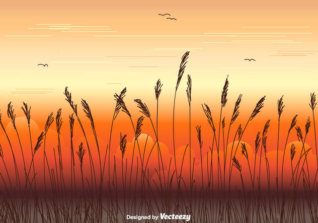 Sea Oats Vector Background - Free vector #413643