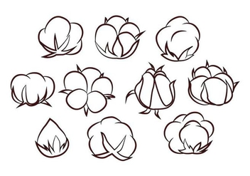 Free Cotton Flower Vector - vector #414953 gratis