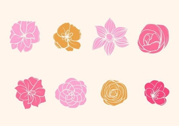 Free Camelia Flower Vector - Free vector #418503