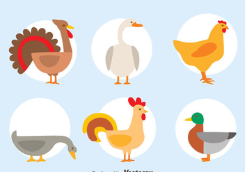 Nice Fowl Collection Vector - Free vector #419843