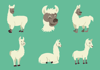 Funny Llama character vector illustration - vector gratuit #420303