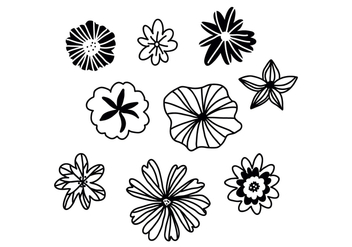 Set Of Black And White Flowers - vector gratuit #422083