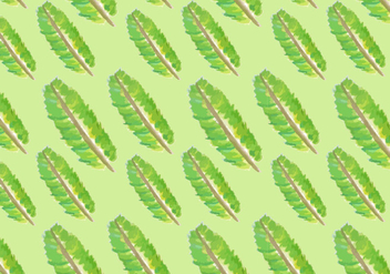 Watercolor Banana Leaf Vectors - vector gratuit #424883
