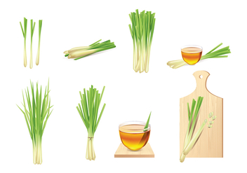 Lemongrass Vector Elements - Kostenloses vector #425033