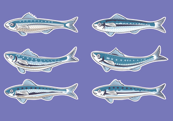 Vector Illustration for Artwork Sardine or European Pilchard - Kostenloses vector #429253
