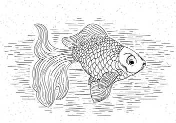 Free Goldfish Vector Hand Drawn Illustration - Free vector #429463