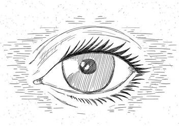 Free Hand Drawn Vector Eye - Free vector #429513