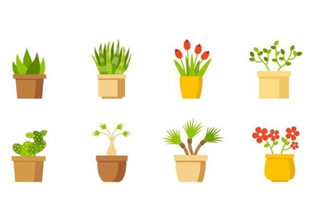 Free House Plant Collection Vector - Free vector #429573