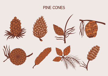 Brown Pine Cones Vector Illustration - Free vector #432313