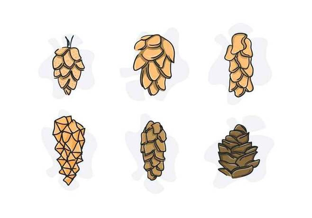 Free Unique Pine Cones Vectors - бесплатный vector #433473
